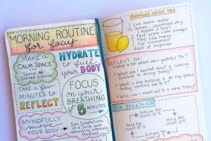 your wellness bullet journal