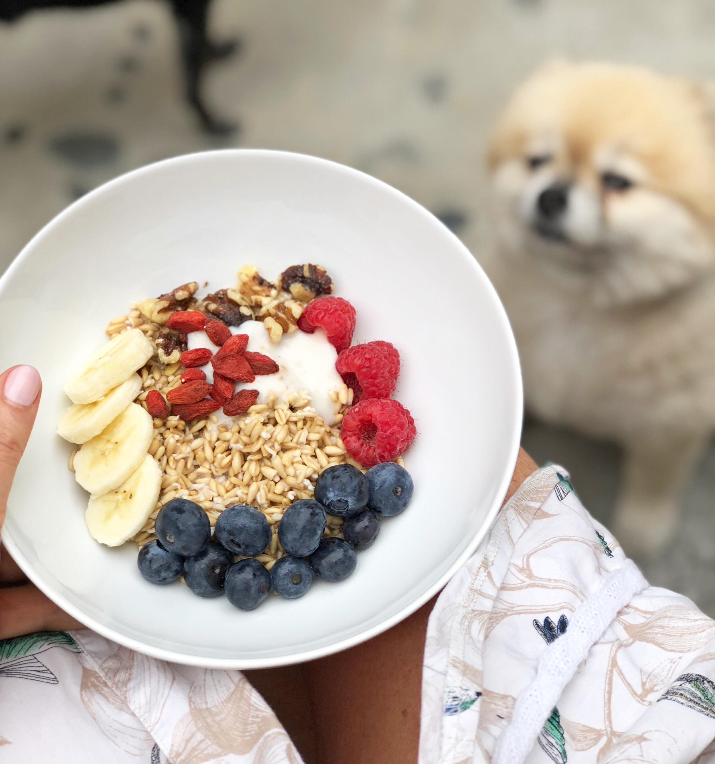 nude breakfast bowl