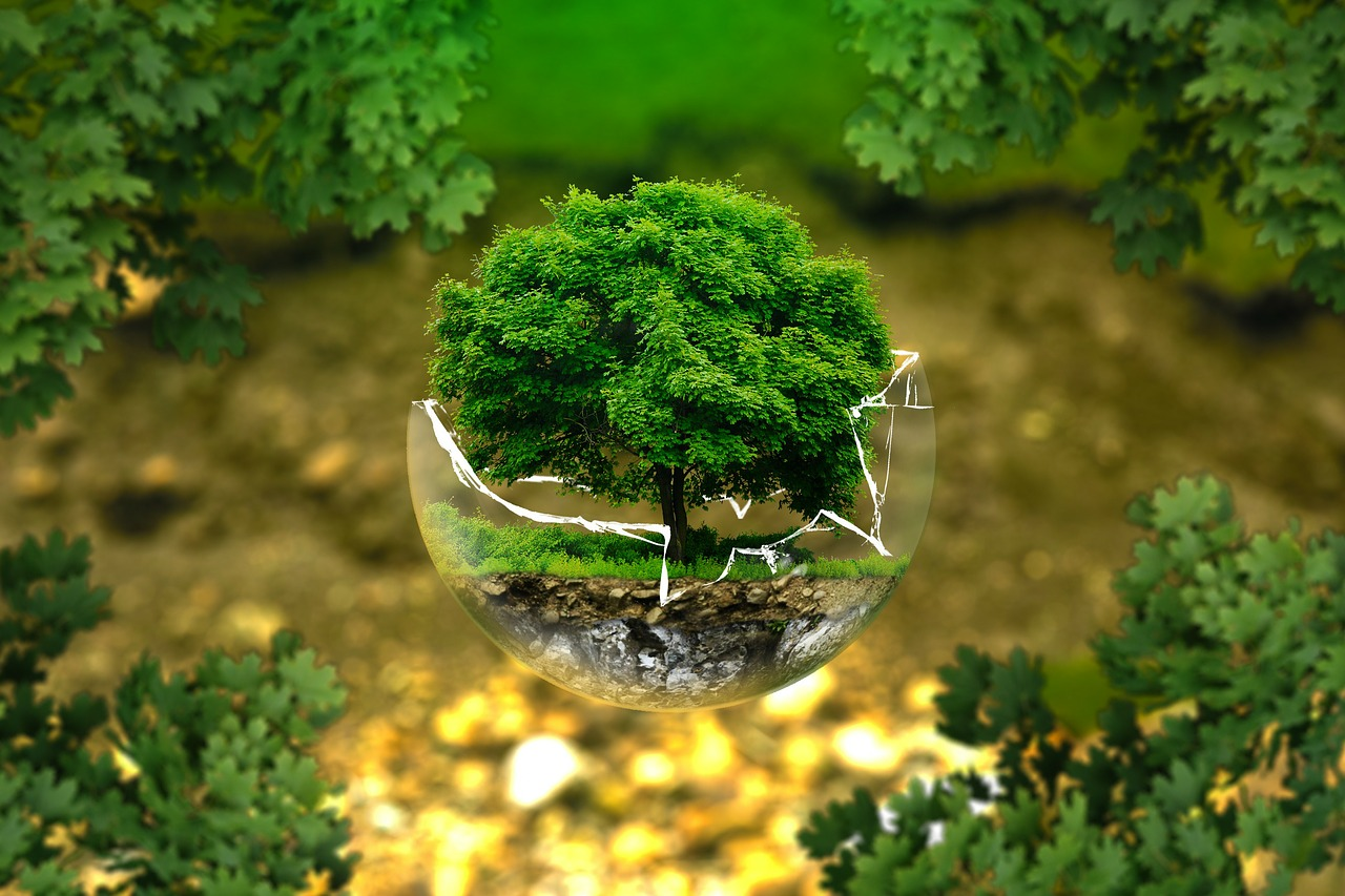 9 ways to save money and go green Earth Day 2019