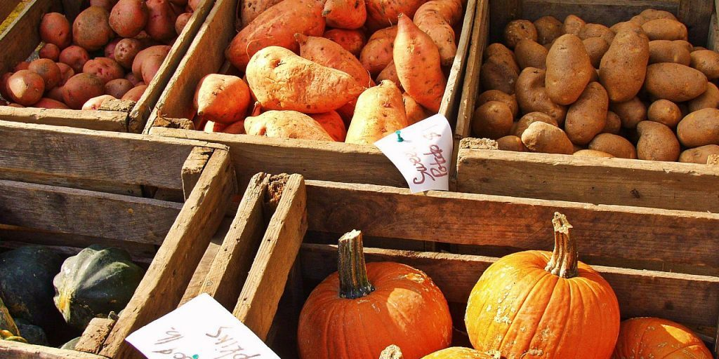 How to eat seasonally to protect your health